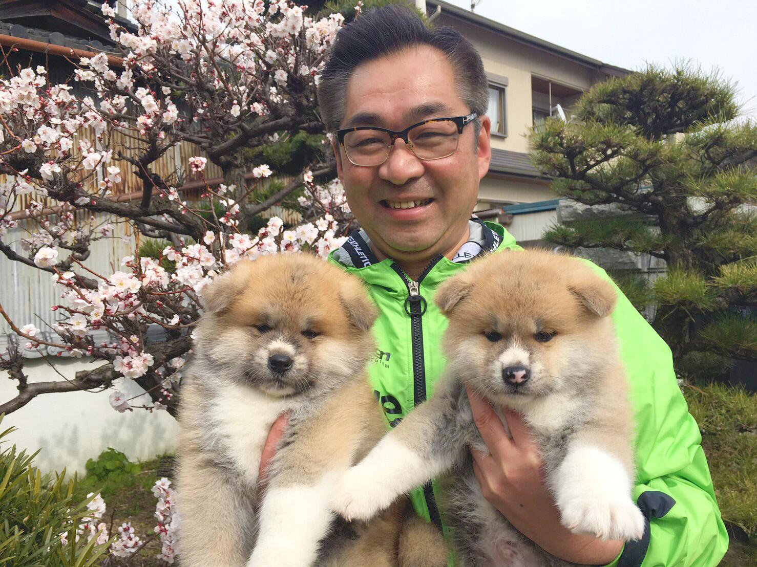 秋田犬保存会 会長を務める遠藤敬さん