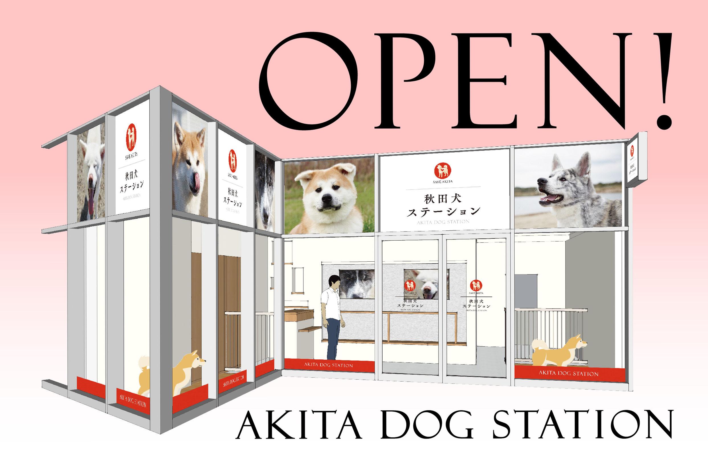 「秋田犬 ステーション」OPEN!
