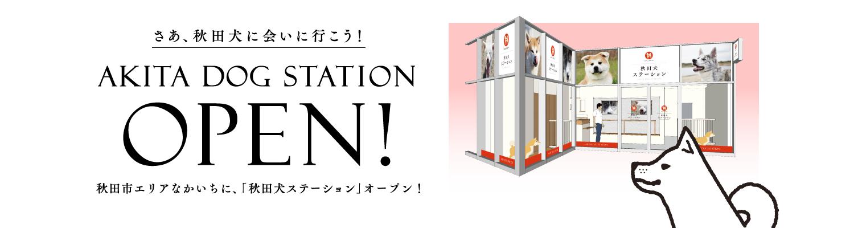 http://www.saveakita.or.jp/station/