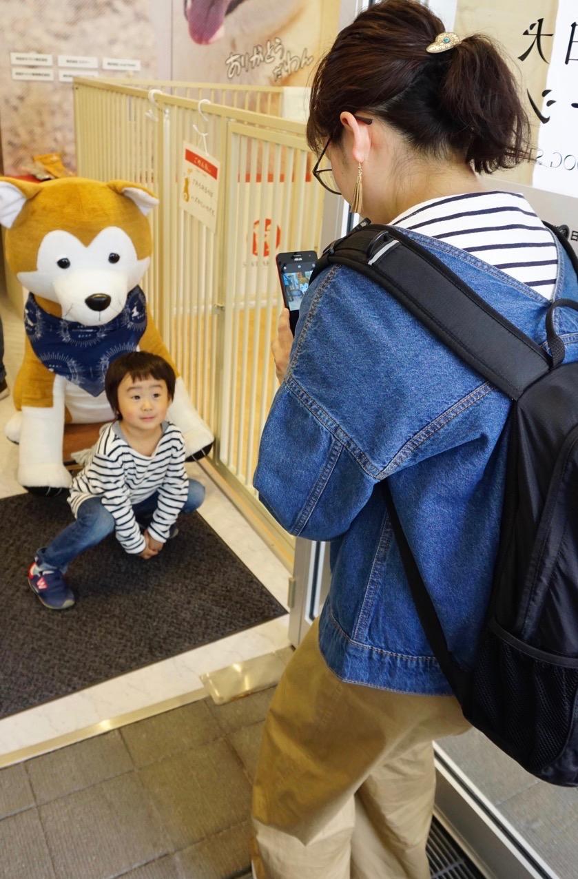 秋田犬ステーション、好評活動中