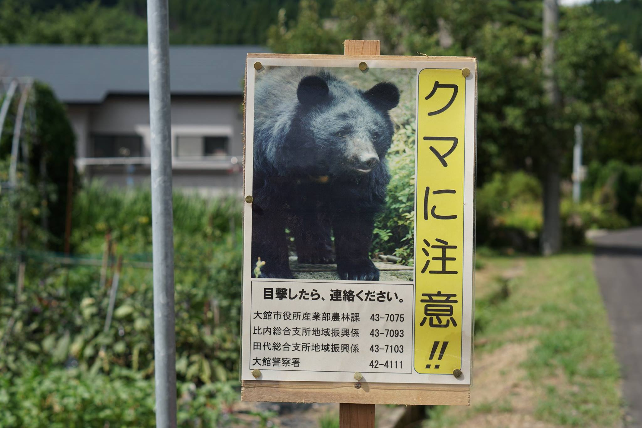 秋田犬の伝説を追って◆老犬神社への行き方