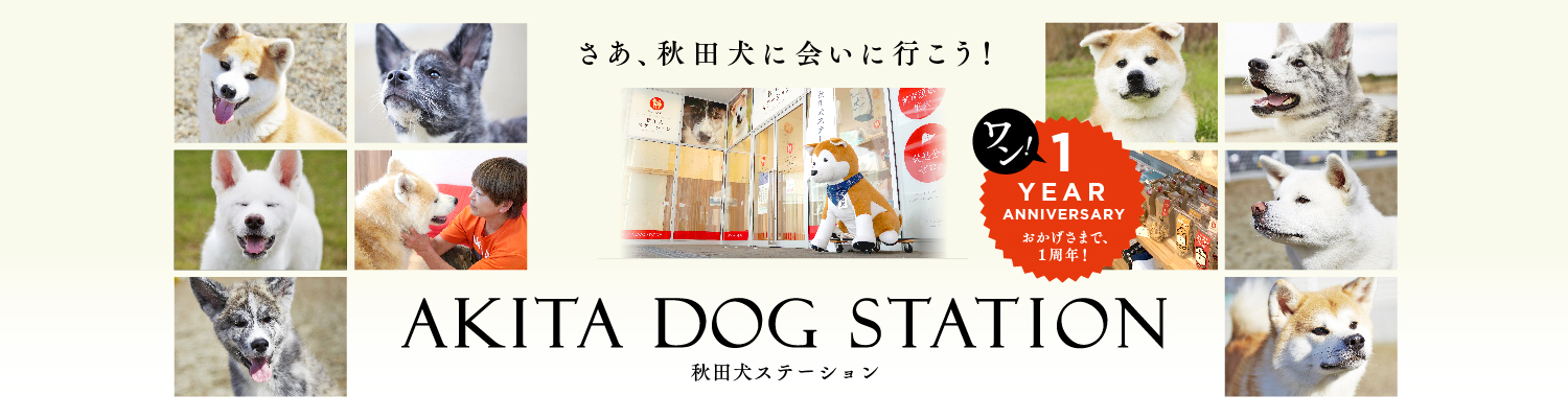 http://www.saveakita.or.jp/station/