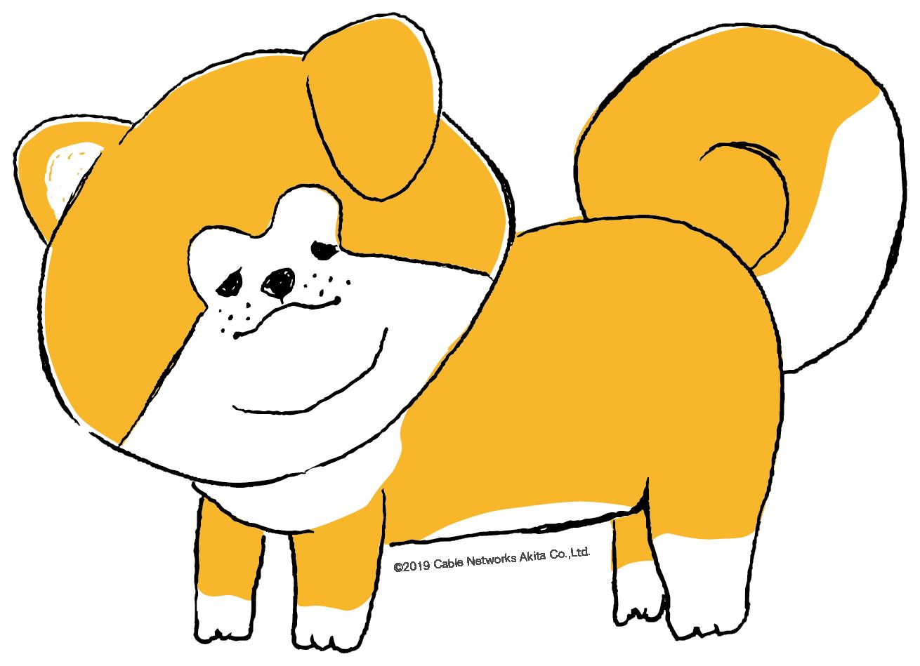 秋田犬ファン必見のウェブサイトが誕生